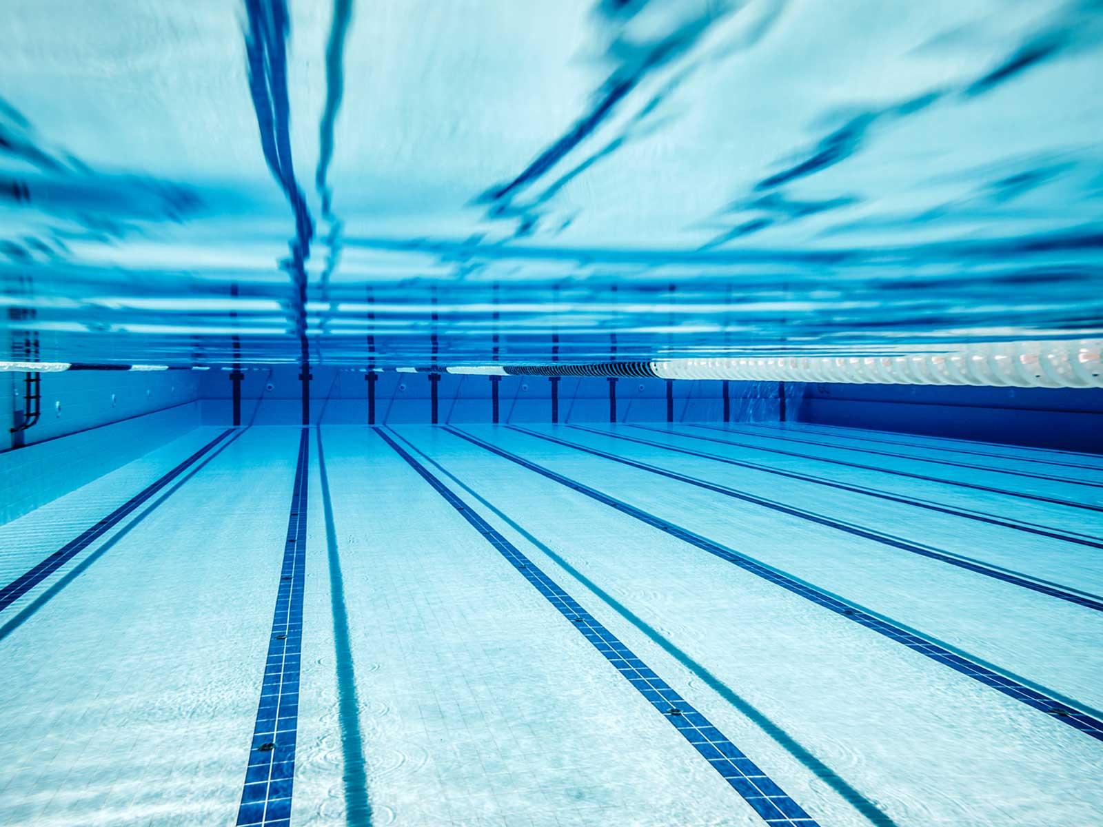 Vert marine le succ s d une entreprise de sportifs for Nettoyage piscine verte