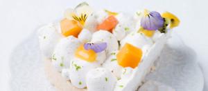 La-pavlova-aux-fruits-exotiques-d-Helene-Darroze_imagePanoramique500_220